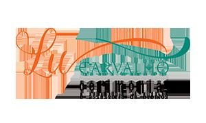 Lu Carvalho Cerimonial e Assessoria para Eventos